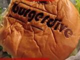 Aankondiging: Hamburgerduik februari 2016
